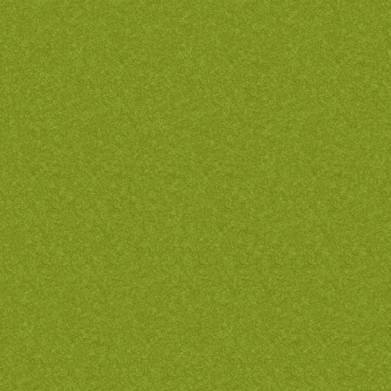 FE_Lime 64